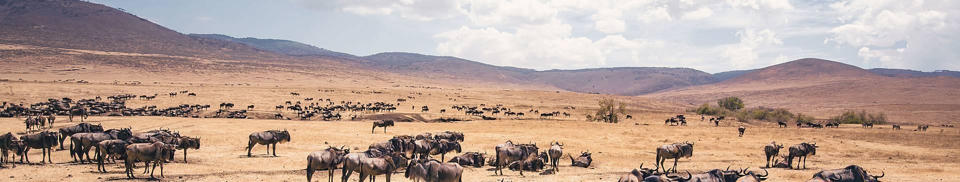 Mietwagenrundreisen Tansania