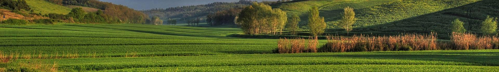 Región de Toscana