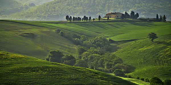 Les prés verdoyants de la Toscane