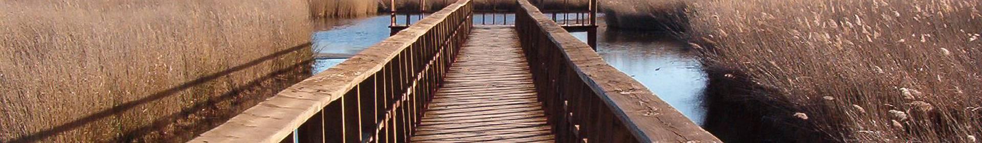 Parc National de Las Tablas de Daimiel