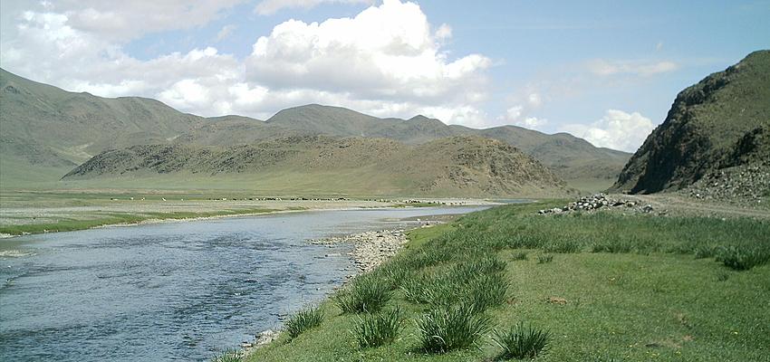Dans la vallée de l'Orkhon