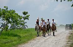 Sport, aventure: escalade, tyrolienne, randonnées équestres