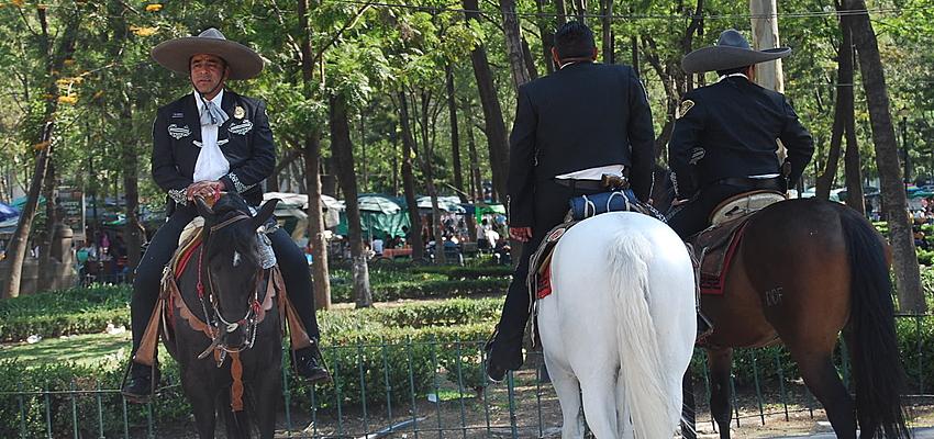La polizia a cavallo