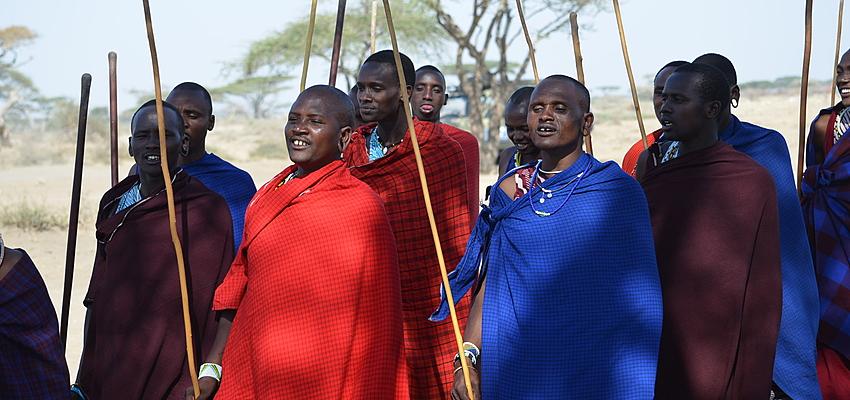 Danse chez les Massaïs