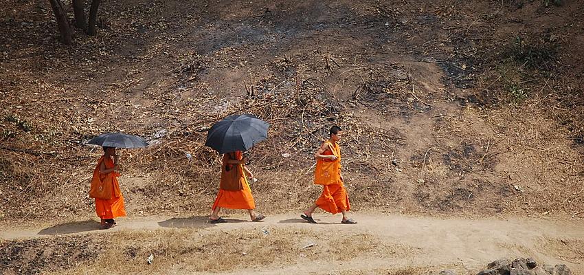 Moines au Laos