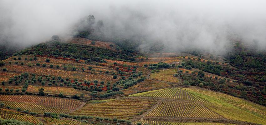 Los paisajes perfectos del valle del Douro (Duero)
