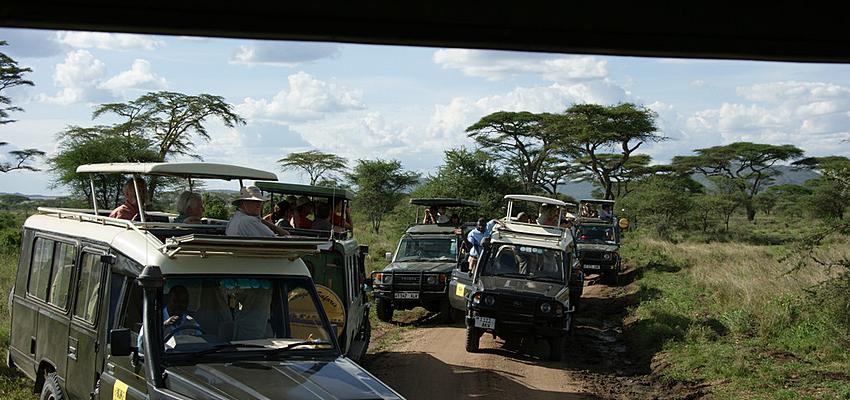 Jeep en Tanzanie