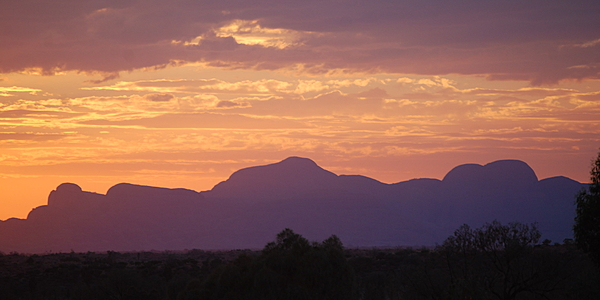 Dans l'Outback