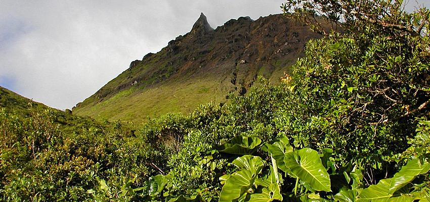 Vue du volcan la Soufriere