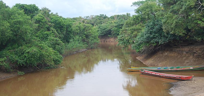 En Guyane