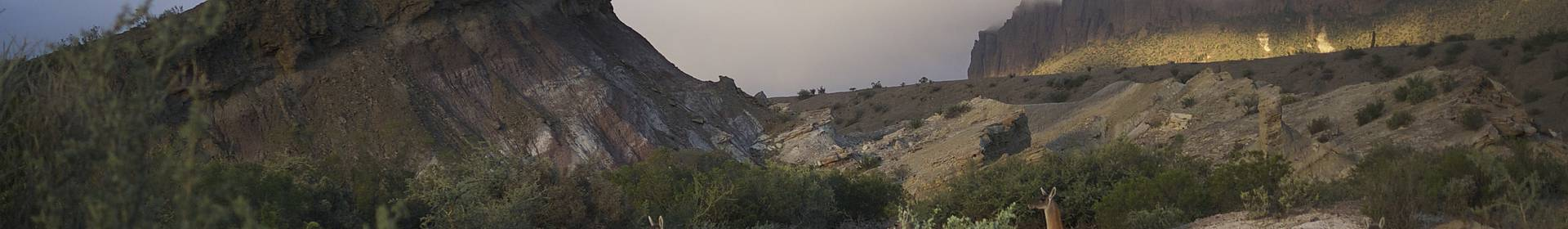 San Agustin del Vallee Fertil