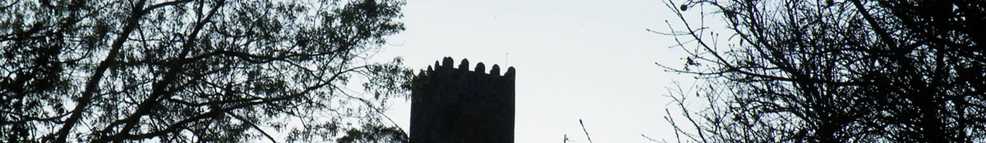 Celorico de Basto Municipality