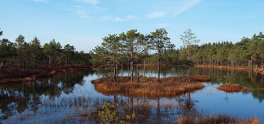 Lago en Estonia