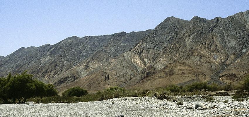 In Oman