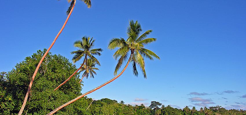 Aux Vanuatu