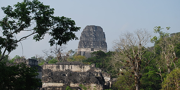 En Tikal