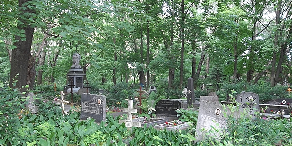 Cementerio Ivana Kapi