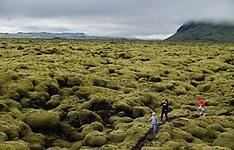 L\'Islande en famille