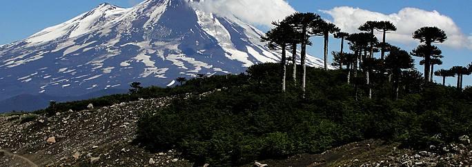 Chili: Voyage Parc National Conguillio et circuits sur ...