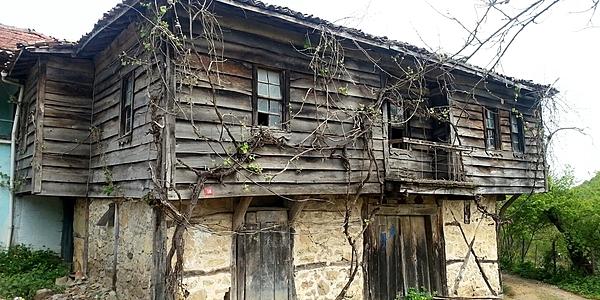 Maison traditionnelle en bois