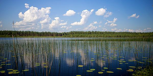 Uno de los muchos lagos de Latgale