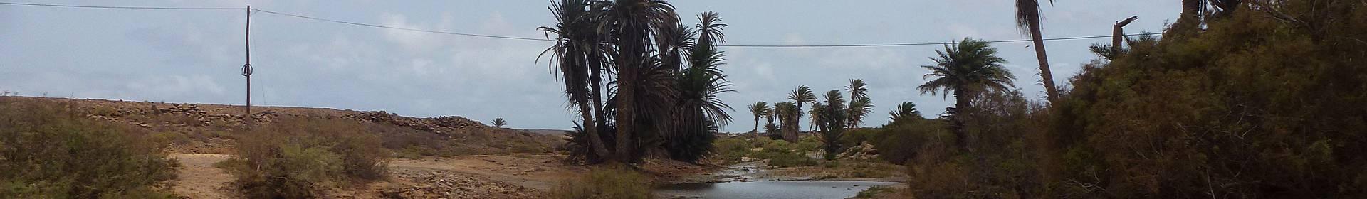 Les îles Barlavento