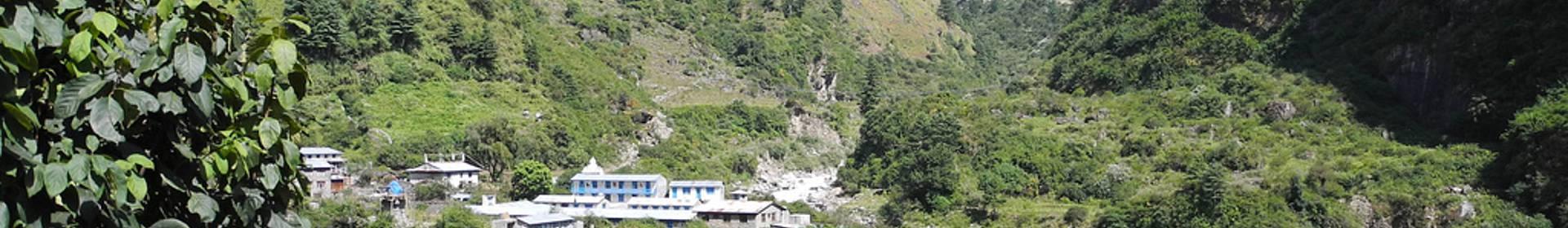 Dharapani