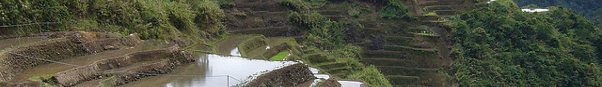 Maligcong