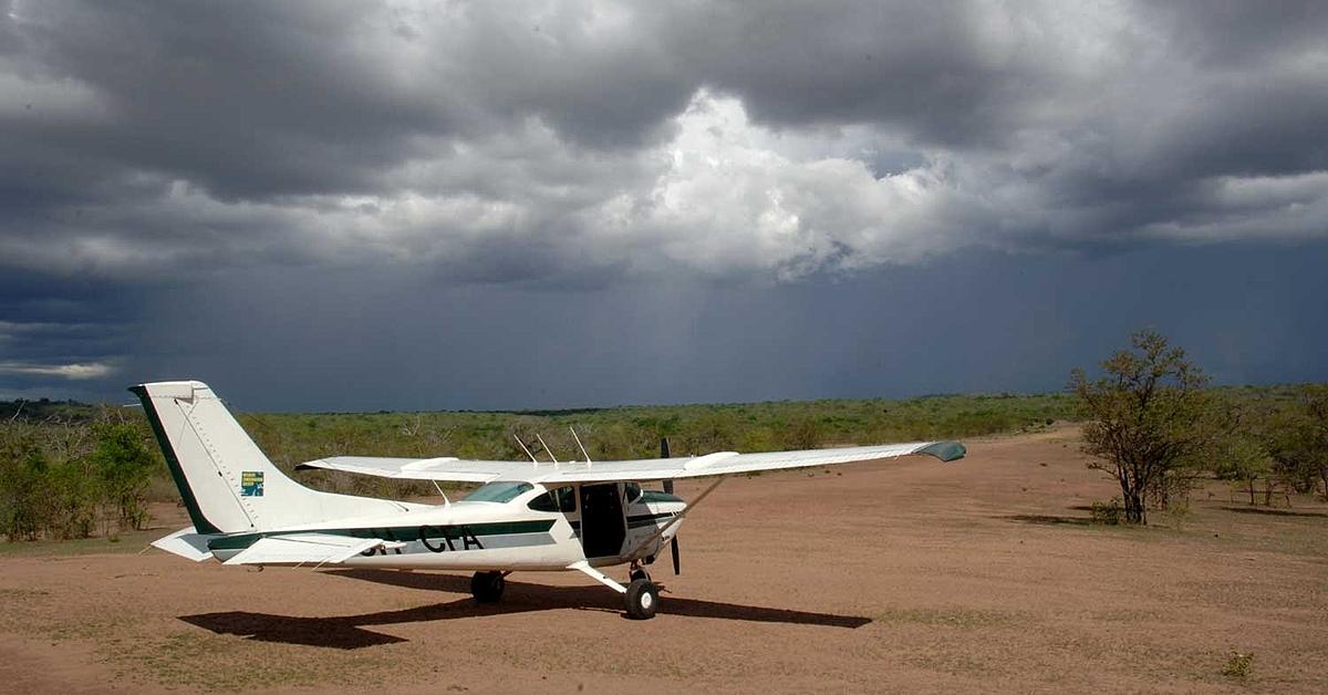 Voyage avec des animaux Tanzanie : Fly in safari et plage, du Selous à Zanzibar