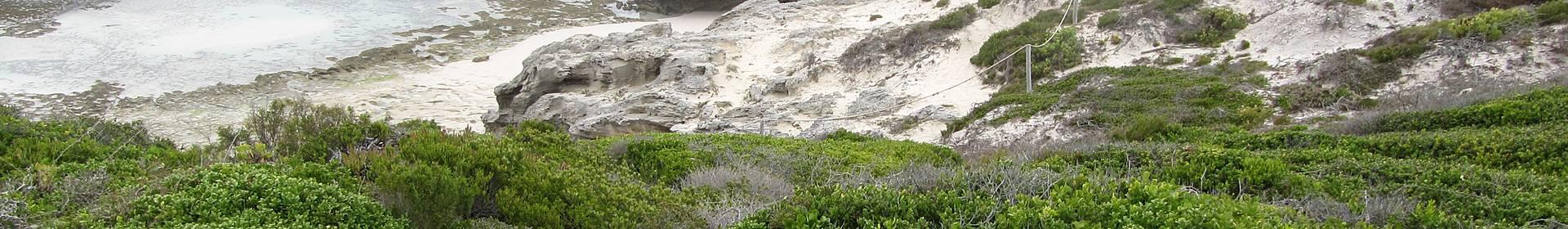 De Hoop nature réserve