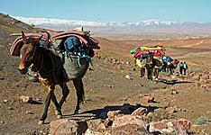 Traversée du Djebel Sarho