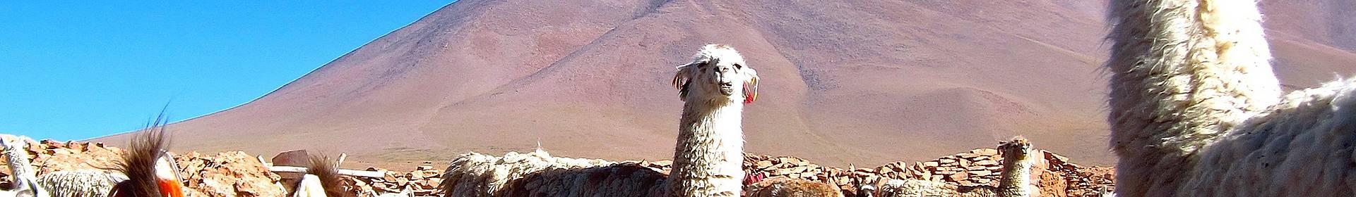 Quetena