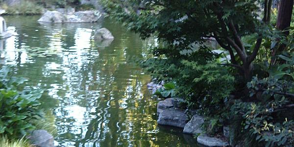 El jardín Zen de Montevideo