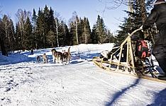 L\'hiver au Sacacomie