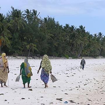 Sito di incontri gratuito in Tanzania