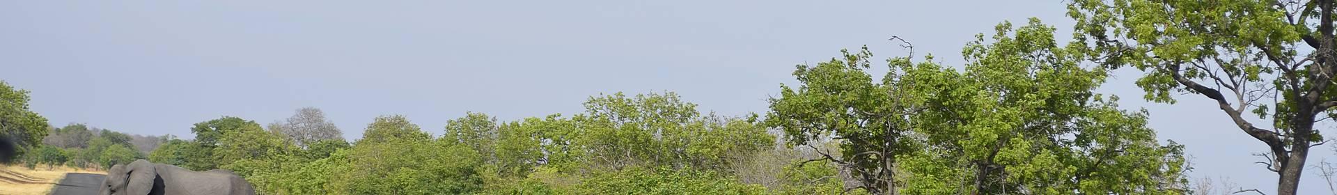Caprivi Zipfel