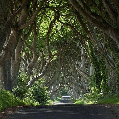 Sur les traces de la série Game of Thrones - Dublin -