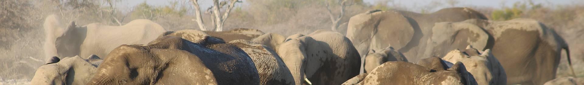 Parc National de Mudumu