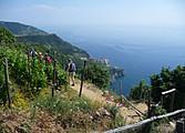 Randonnée dans le Parc des Cinque Terre