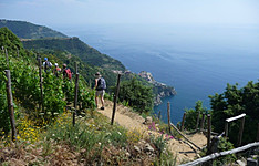 Randonnées dans le Parc des Cinque Terre