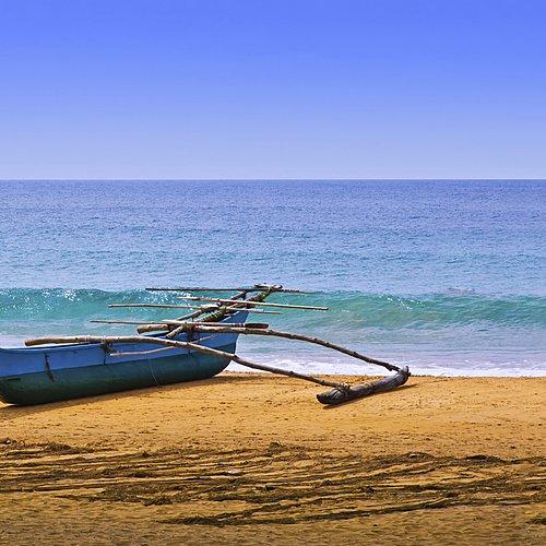 Du Pic d'Adam aux plages par les cités antiques - Negombo -