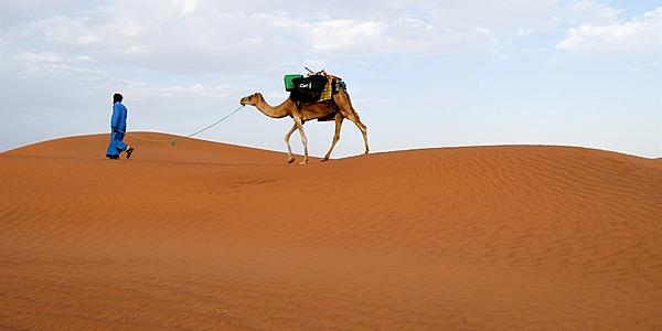 Paseo en camello por el desierto marroquí