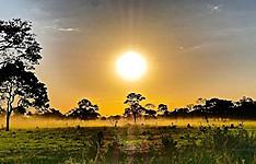 Le Pantanal - Biodiversité et Découvertes