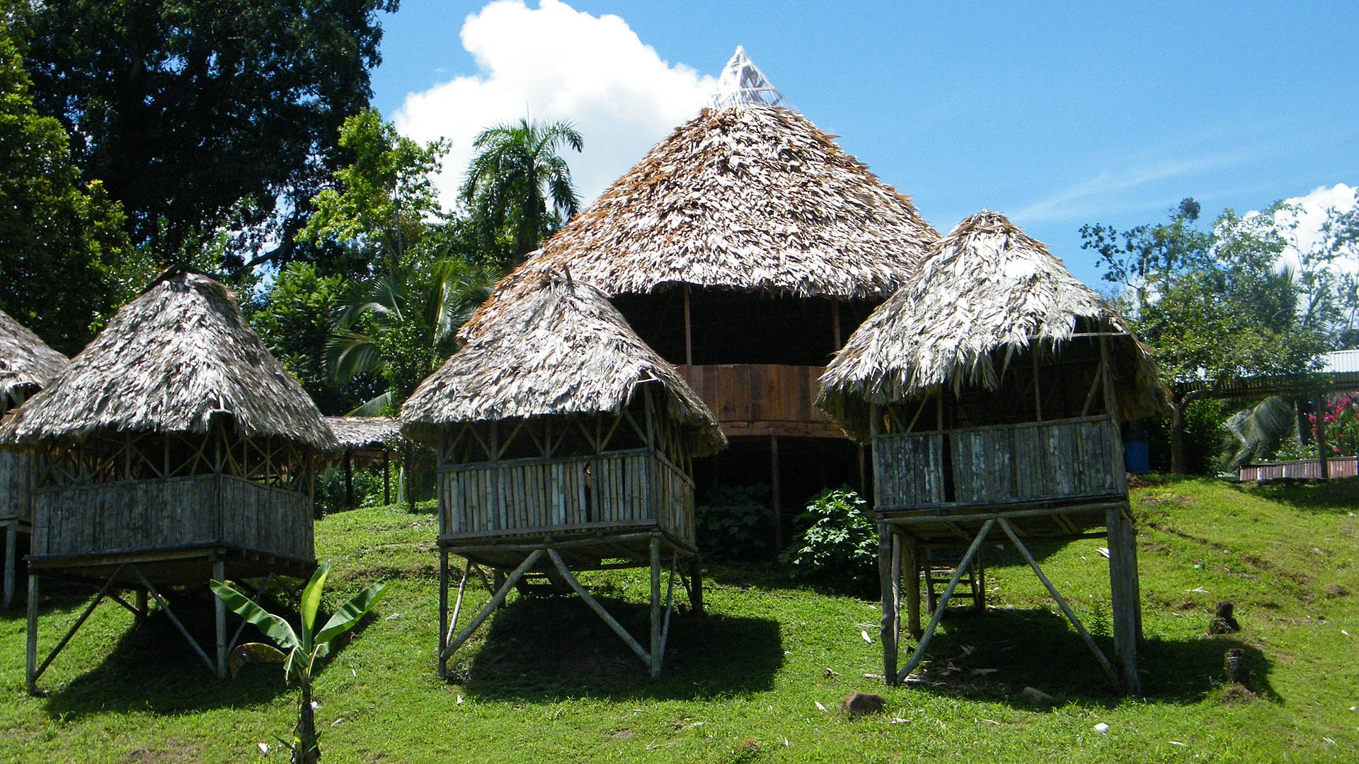 Découverte de la biodiversité et aventure en famille au pays du Quetzal