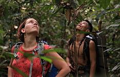 Sumatra Nord : Nature - Vie sauvage