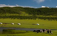 Randonnée-découverte en pays nomade