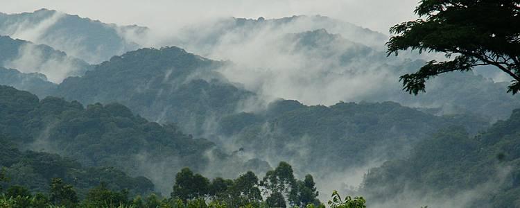 Grands lac, volcans et primates - Ouganda/Rwanda version charme