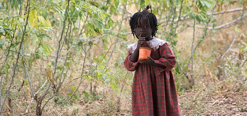 En Zambie