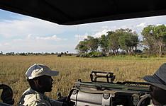 Safari et bivouac-le Botswana guidé en français