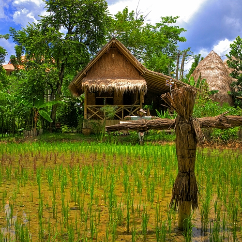 Bangkok et les villages du Nord - Bangkok -